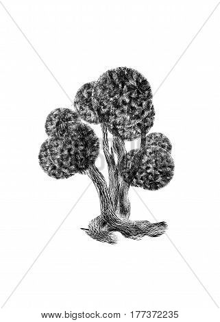 Black silhouette of fairy bizarre boxwood tree isolated on white background.