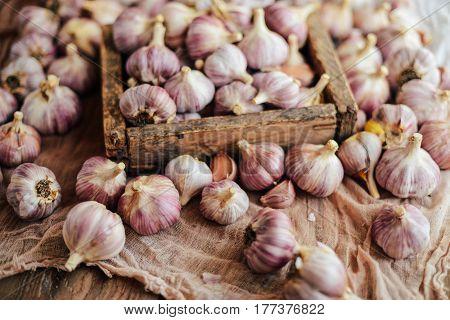 Close-up Garlic Bulbs And Garlic Cloves On Wodeen Background. Ga