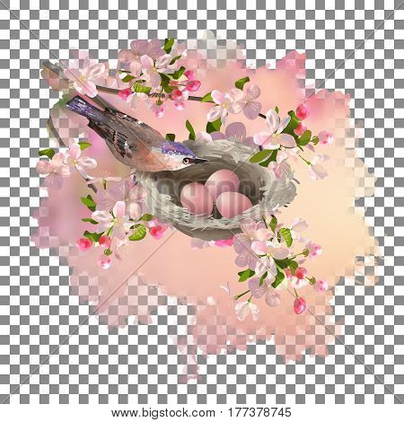 Vector spring apple blossom and a bird at nest inside watercolor painted blot with transparent edges