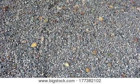 Shingle hill is scattered with fine texture