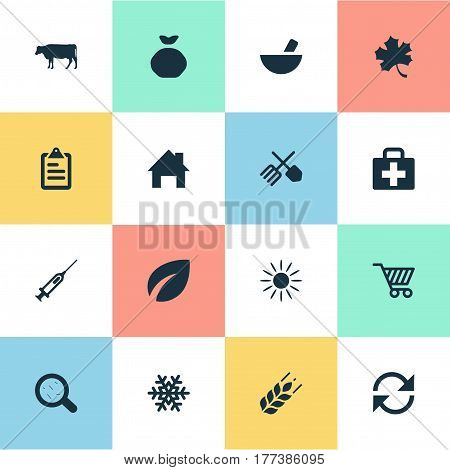 Vector Illustration Set Of Simple Agricultural Icons. Elements Cart, Sunshine, Refresh And Other Synonyms List, Medicine And Sunlight.