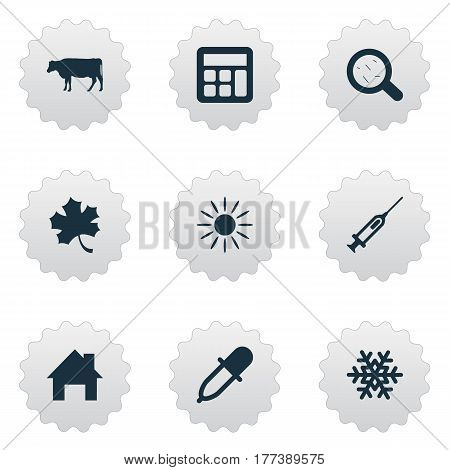 Vector Illustration Set Of Simple Harvest Icons. Elements Calculator, Snowflake, Sunshine And Other Synonyms Sunlight, House And Frond.