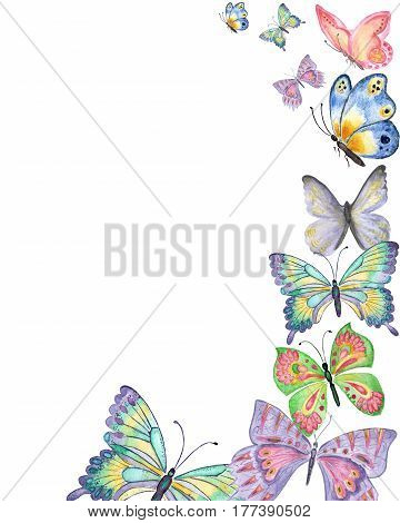 Butterflies watercolor hand drawn background with colorful butterflies isolated on white background. For greetings card design. Copy space