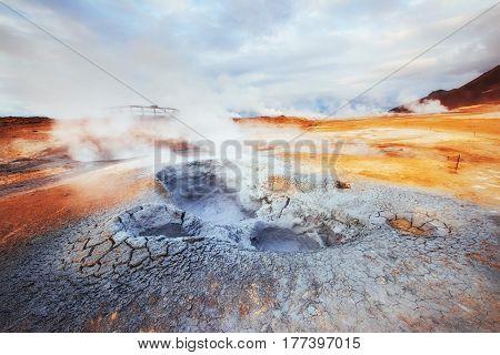 Fumarole Field In Namafjall Iceland.