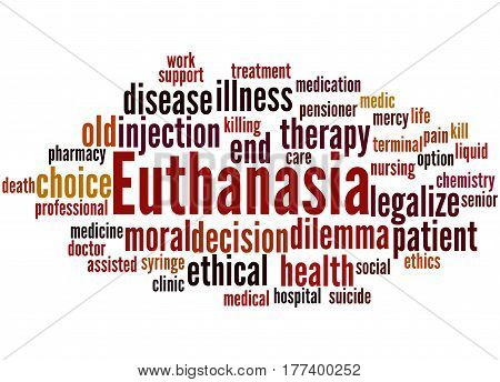 Euthanasia, Word Cloud Concept