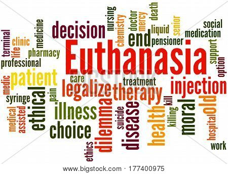 Euthanasia, Word Cloud Concept 8