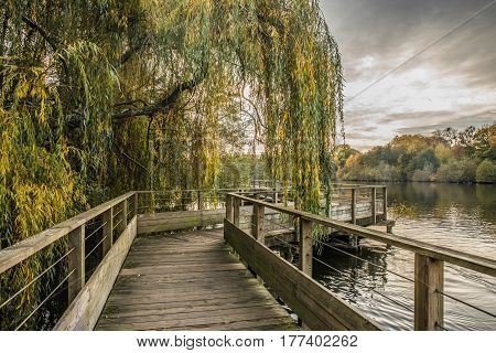 Wood footbridge on the Erdre river in autumn (Nantes, Loire Atlantique)