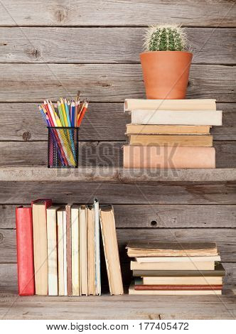 Old books on a wooden shelf, pencils and cactus plant