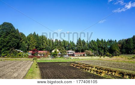 Countryside In Nikko, Japan