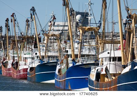 Dutch Harbor With Modern Fishing Cutters