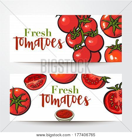 Banners with ripe red tomatoes, salsa, ketchup bowl and place for text, sketch vector illustration isolated on white background. Banner, label design, decoration element with ripe tomatoes and sauce