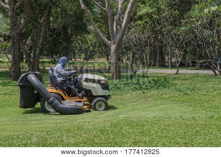 worker cutting grass lawn mower in green field in garden.