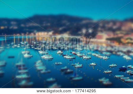Yachts In Summer Evening.