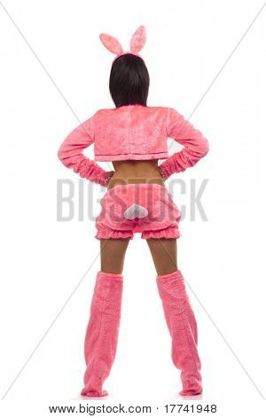Rear view of playgirl in  pink bunny costumes isolated on white