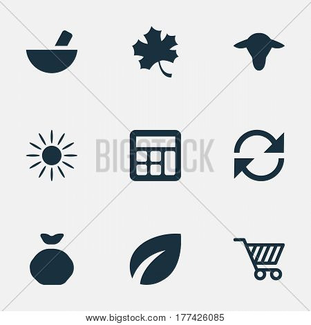 Vector Illustration Set Of Simple Harvest Icons. Elements Leaf, Medicament, Sack And Other Synonyms Arrow, Remedy And Buffalo.