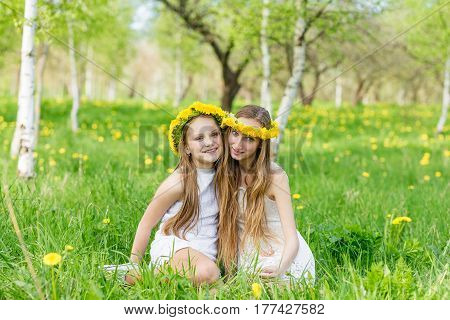 Girlfriends Are Sitting In The Grass With Wreaths Of Dandelions On Their Heads