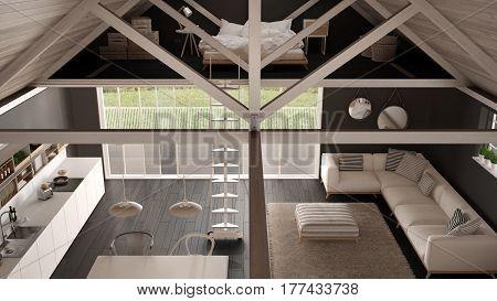 Minimalist Mezzanine Loft, Kitchen, Living And Bedroom, Wooden Roofing And Parquet Floor, Top View,