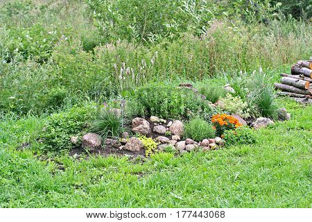 Rock garden with stones tagetes vinca origano and thyme and uncultivated field on background