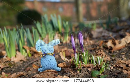 blue handmade rabbit between spring magenta flowers