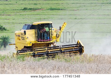 Tractor Harvesting Soybeans On A Farm