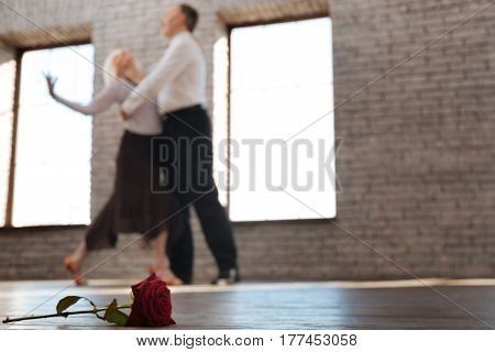 Symbol of the passionate dance . Skilled flexible inspired aging couple performing in the ballroom while mastering dance skills and tangoing