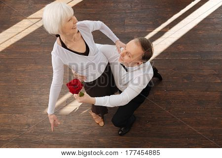 Falling in love with you again. Charismatic passionate bearded aged man tangoing with his wife in the dance studio while demonstrating dance skills and holding rose