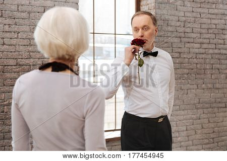 Preparing dance for our anniversary . Charming passionate positive aging man tangoing with his wife in the dance studio while expressing love and holding rose
