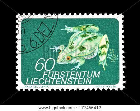 LIECHTENSTEIN - CIRCA 1973 : Cancelled postage stamp printed by Liechtenstein, that shows Frog.
