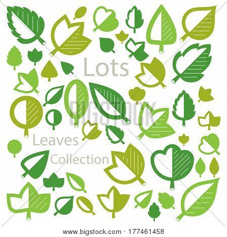 Hand-drawn illustration of simple tree leaves isolated. Green foliage spring herbs collection. Vector botanical symbols can be used as design elements in ecology conservation theme.