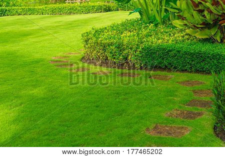 The path in the garden.pathway in the park,curve walkway on green grass field
