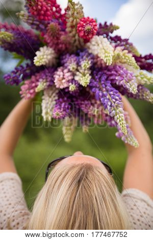 Back view on young girl holding a bunch of beautiful lupine flowers. Purple and pink lupin bouquet. Womanl with bouquet of wild lupin flowers on sunny summer field. Sky background.