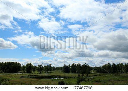farmland underneath a cloudy blue sky with a small pond