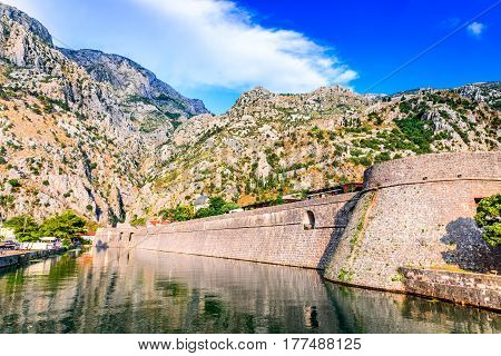 Bay of Kotor Montenegro. Venetian fortress of Kotor and Scurda river. Tower and wall mountain Lovcen at the background.