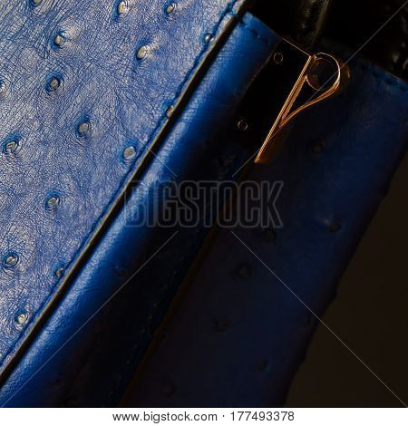 Part of female handbag with embossed under the skin of Ostrich, close-up. For background, backdrop, substrate, composition use. With place for your text