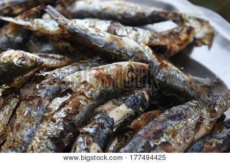 Detail of a plate of grilled Sardines