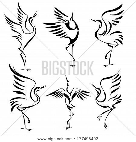 set of isolated stylized image of the dancing cranes on a white background. vector