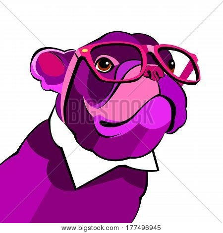 vector close up portrait of the domestic dog French Bulldog breed