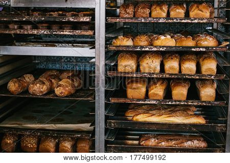 A lot of ready-made fresh bread in a bakery oven in a bakery. Bread making business. Fresh bread from cereals with seeds from a bakery. Healthy and nutritious food. The product contains carbohydrates.