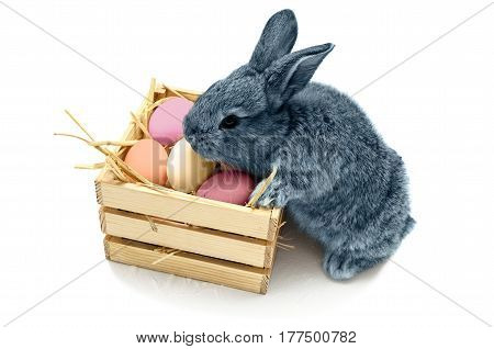 Cute little easter bunny with wooden box full of easter colored eggs isolated on white background. Blue rabbit.