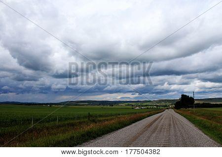 gravel road headed into farmland under a cloudy sky