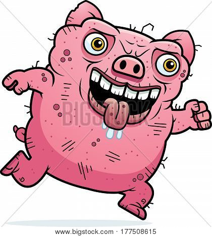 Ugly Pig Running