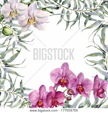 Watercolor tropic card with white and pink orchids and eucalyptus. Hand painted floral illustration with eucalyptus branch and exotic flowers isolated on white background.