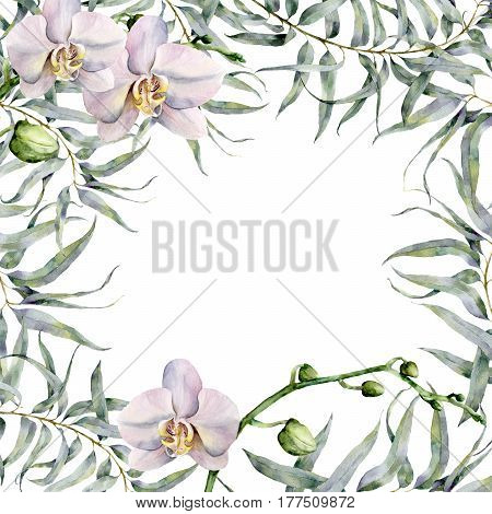 Watercolor floral card with white orchids and eucalyptus. Hand painted floral botanical illustration with eucalyptus branch and exotic flowers isolated on white background.