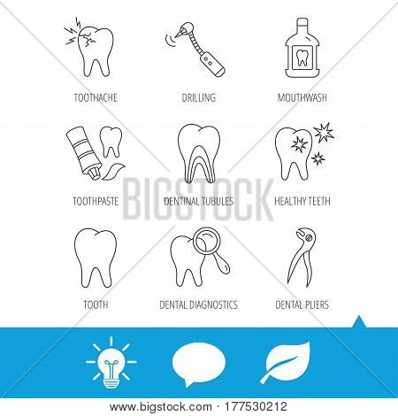 Tooth, stomatology and toothache icons. Mouthwash, dental pliers and diagnostics linear signs. Dentinal tubules, drilling icons. Light bulb, speech bubble and leaf web icons. Vector