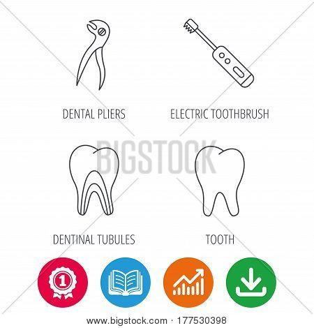 Tooth, electric toothbrush and pliers icons. Dentinal tubules linear sign. Award medal, growth chart and opened book web icons. Download arrow. Vector