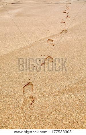 Footsteps on a sandy beach