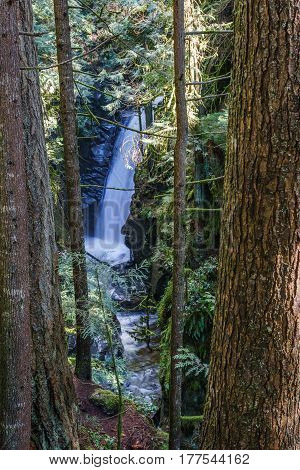Upper waterfall in the forest Cypress Falls park West Vancouver British Columbia Canada