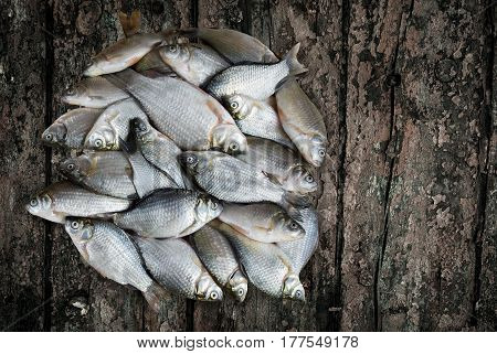 On the surface of the wooden table is fresh water fish.