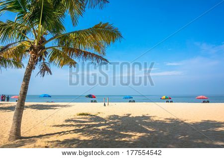 Paradise Beach On The Arabian Sea Coast
