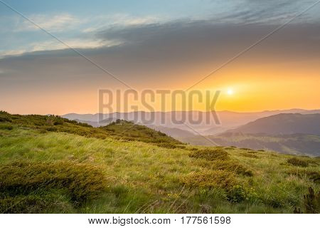 Majestic sunset in the mountains landscape.pine trees in the foreground, beautiful background. hdr foto